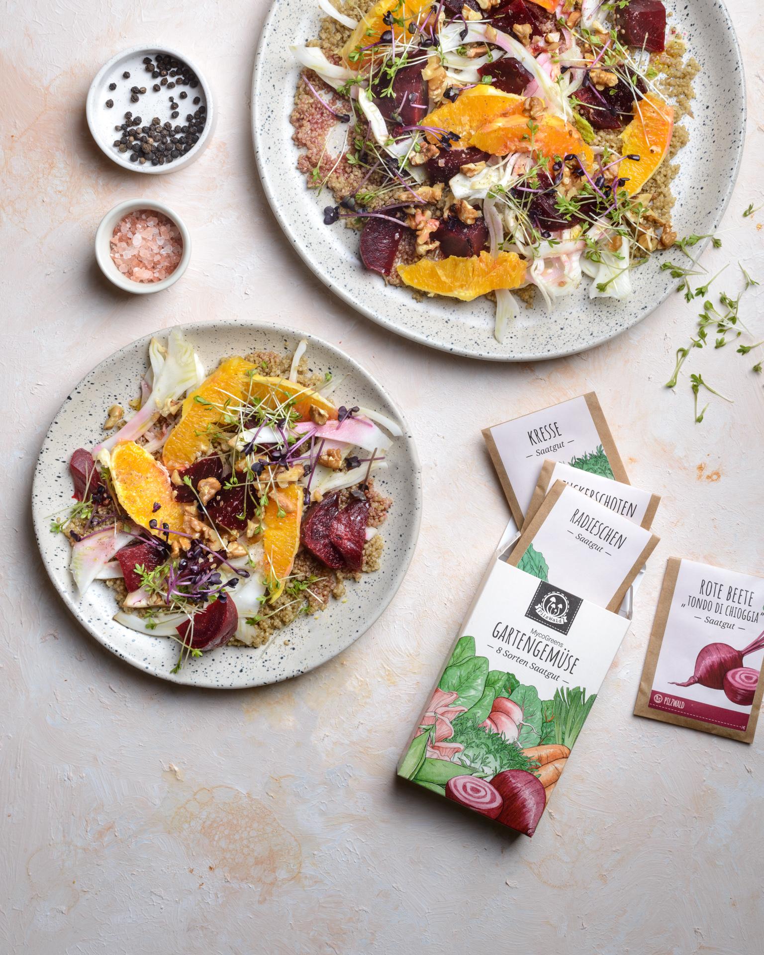 Kräuter und Gemüse Saatgut auf Teller